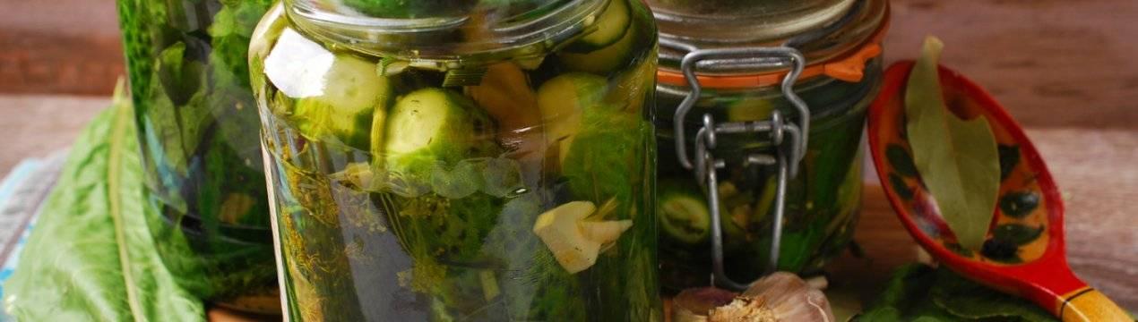 Огурцы с сельдереем маринованные: 5 простых рецептов на зиму с фото и видео