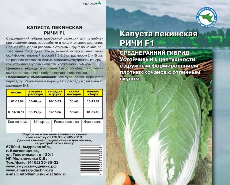 Капуста мегатон f1: отзывы, фото, описание сорта, характеристика, урожайность, особенности выращивания