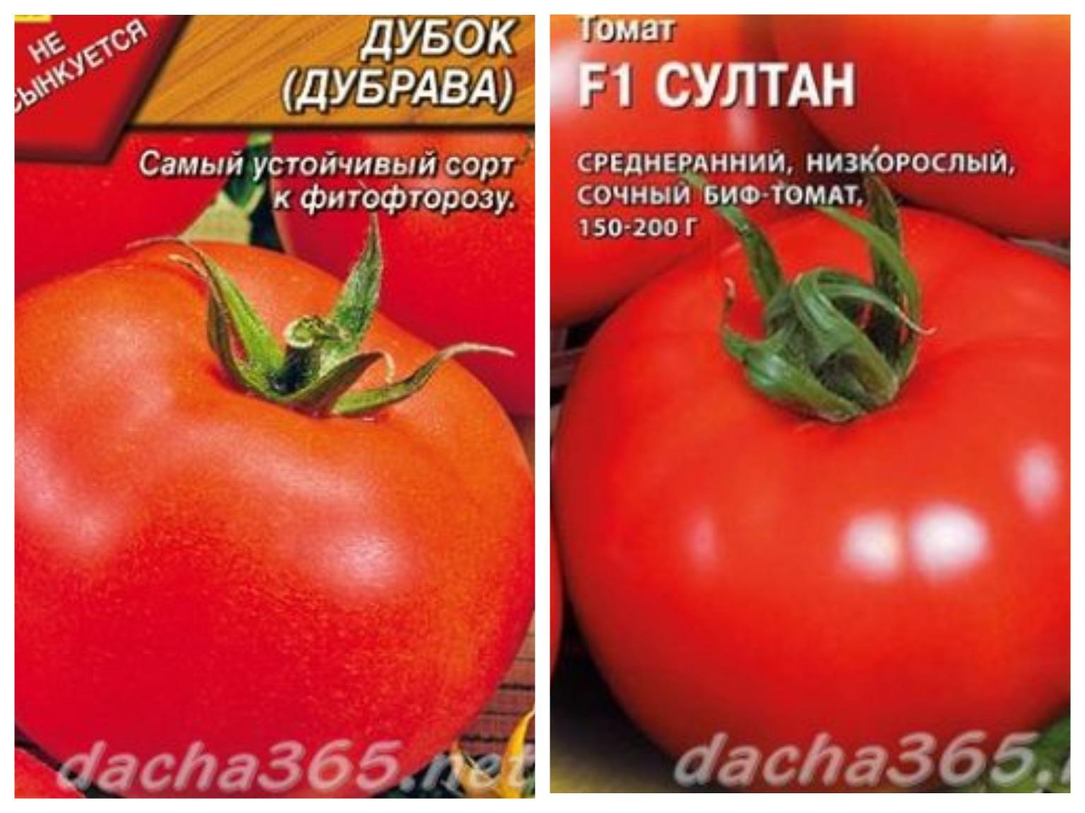 Штамбовые сорта томатов - моё село