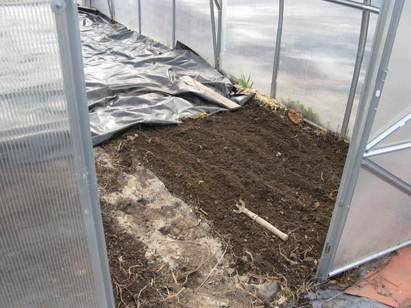 Подготовка почвы для огурцов в теплице весной: какую землю любят, чем обработать
