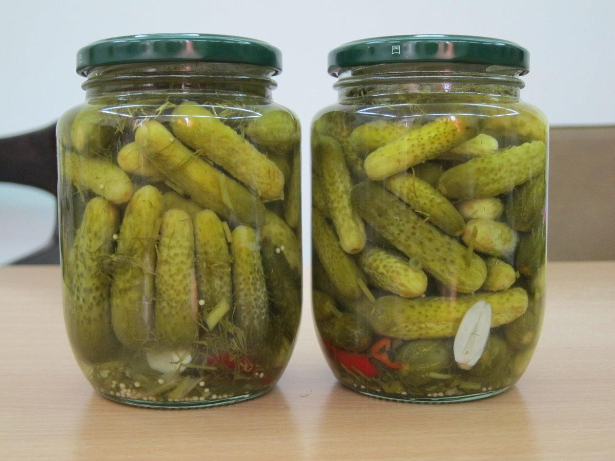 Рецепты засолки огурцов зозуля на зиму