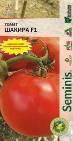 Описание гибридного томата Шакира и особенности выращивания растения