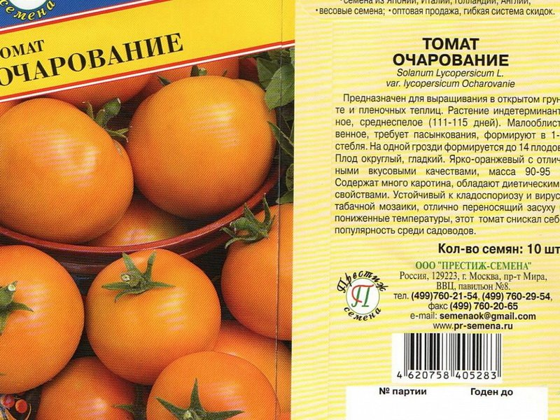 Выращивание томатов: посадка, уход, обработка