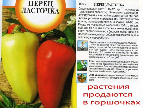 Характеристика и описание перца сорта Ласточка, урожайность, посадка и уход