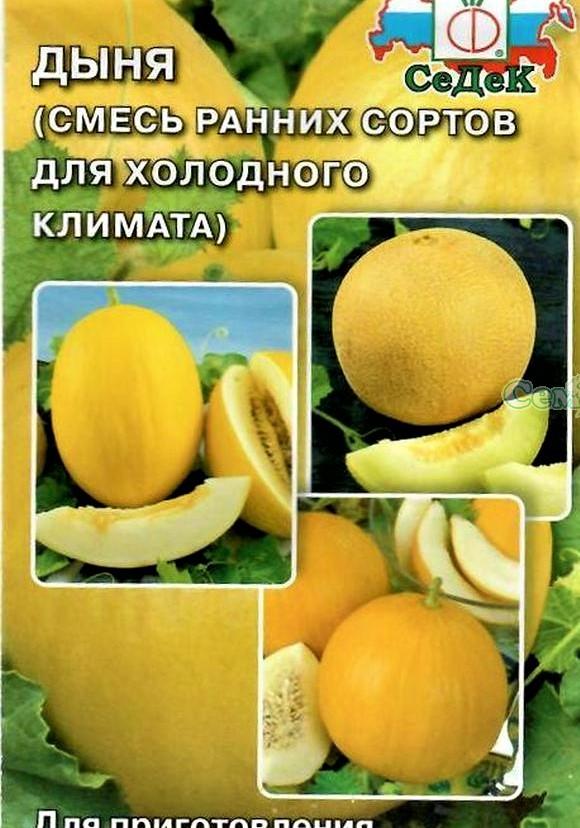 Дыня золушка: отзывы, описание сорта, выращивание