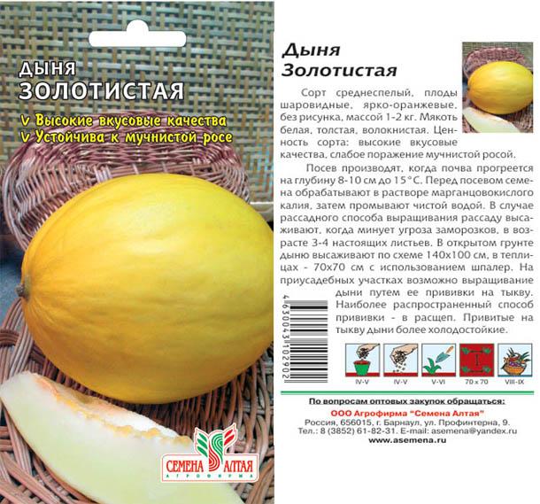 Описание раннеспелого сорта дыни золушка и агротехника выращивания