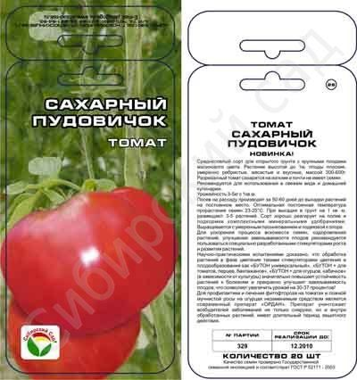 Сорт помидор сахарный пудовичок характеристика плюсы и минусы - всё о землеводстве