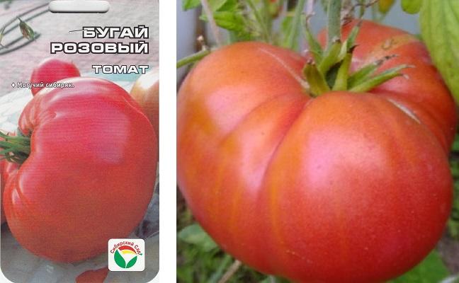 Характеристика томата бугай розовый, отзывы об его урожайности