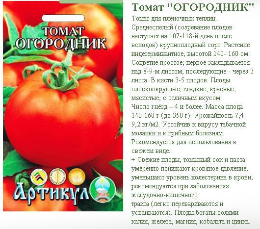 Томат марисса: описание и характеристика сорта, выращивание с фото