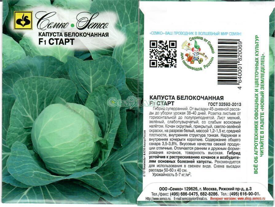 Описание сорта капусты центурион f1, особенности выращивания и ухода