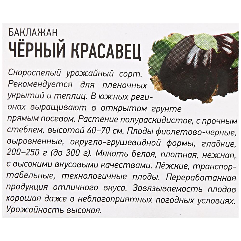 Черный баклажан красавец: описание, выращивание, уход, фото