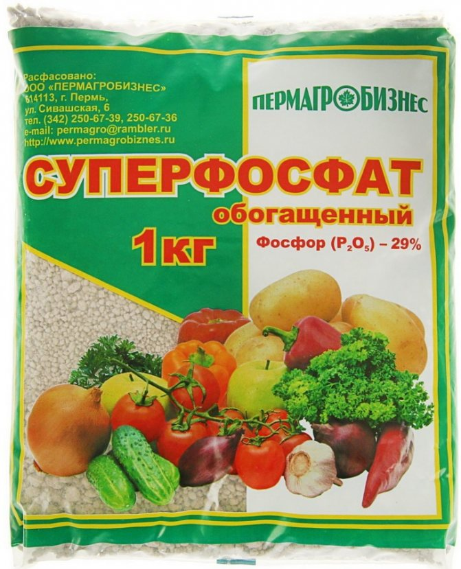 Суперфосфат: применение на огороде, нормы и сроки внесения разных видов удобрения