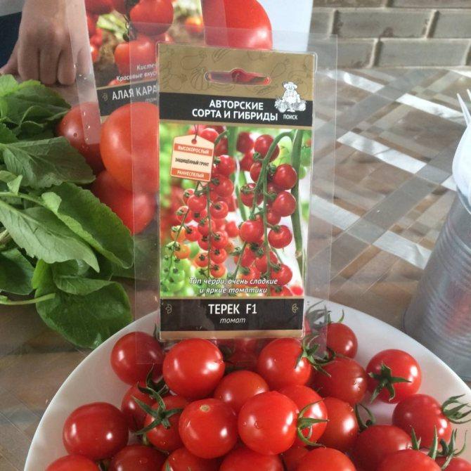 Томат мадейра: описание, фото, характеристика, выращивание сорта помидор