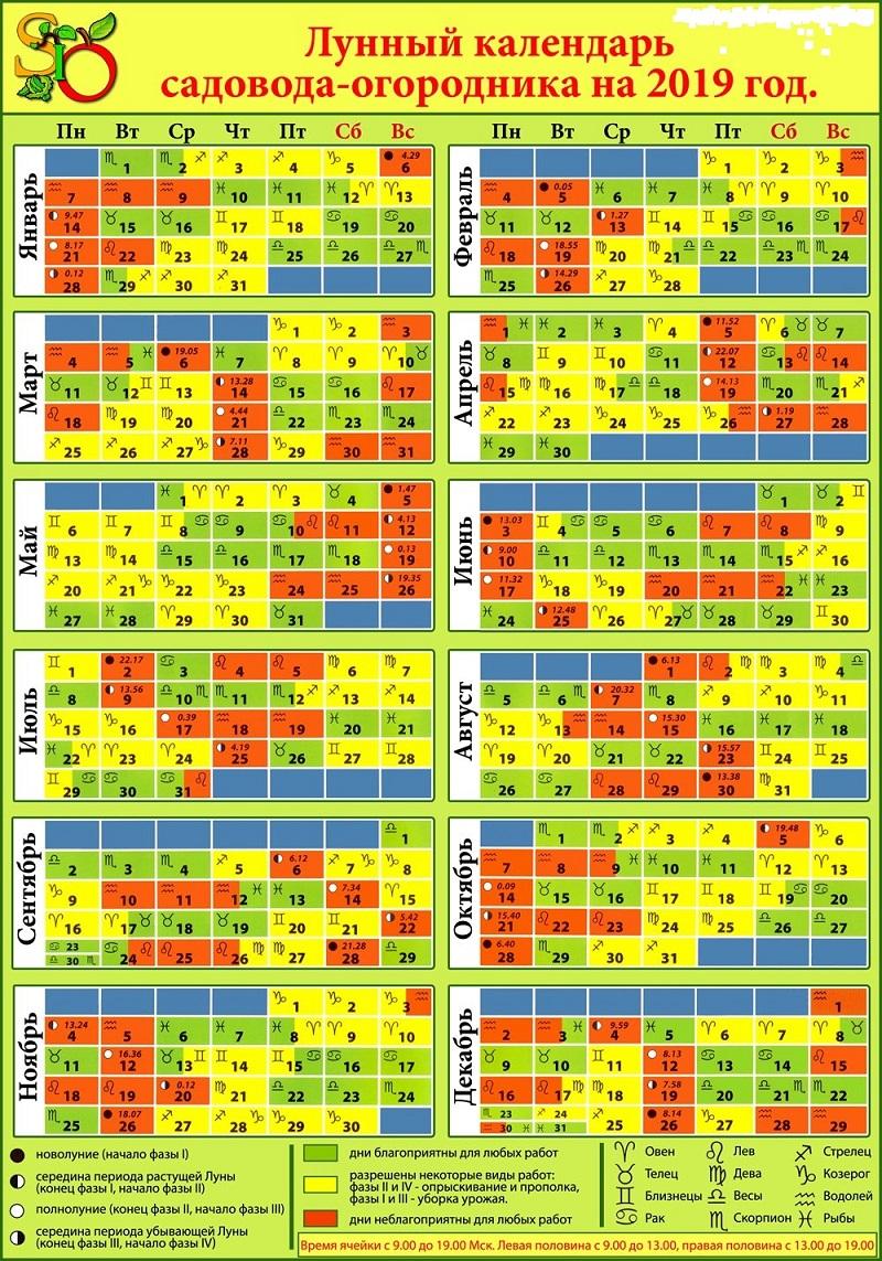 Календарь посадки томатов на рассаду 2021. благоприятные дни в феврале и марте