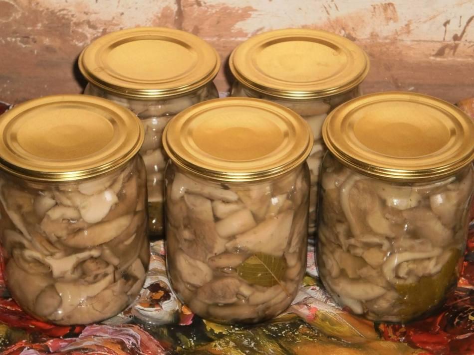 Рецепты приготовления маринованных груздей на зиму в домашних условиях
