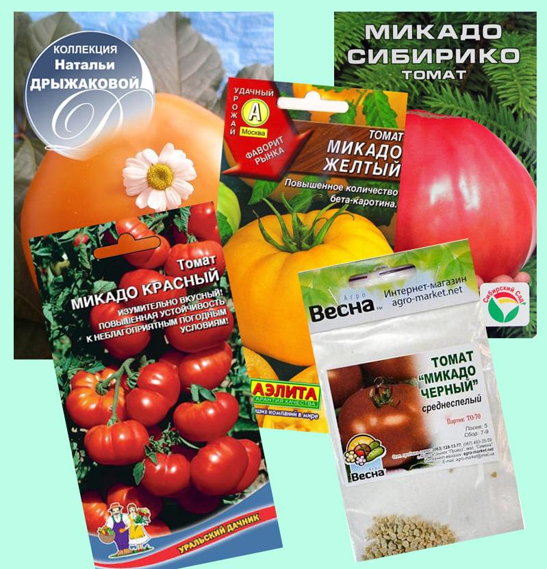Помидоры микадо: описание сорта и выращивание томата, фото и видео
