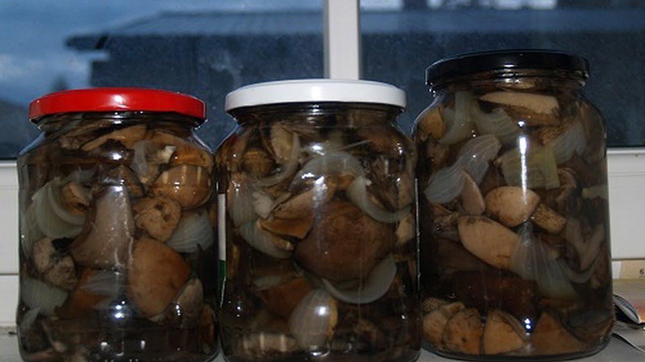Свинухи жареные на зиму рецепты приготовления