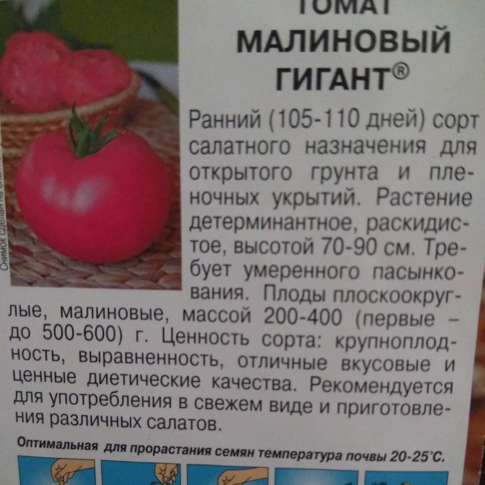 """Томат """"малиновый великан"""": описание сорта, рекомендации по выращиванию, фотографии помидор русский фермер"""