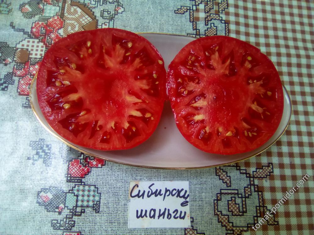 Семена томат сибирские шаньги: описание сорта, фото. купить с доставкой или почтой россии.