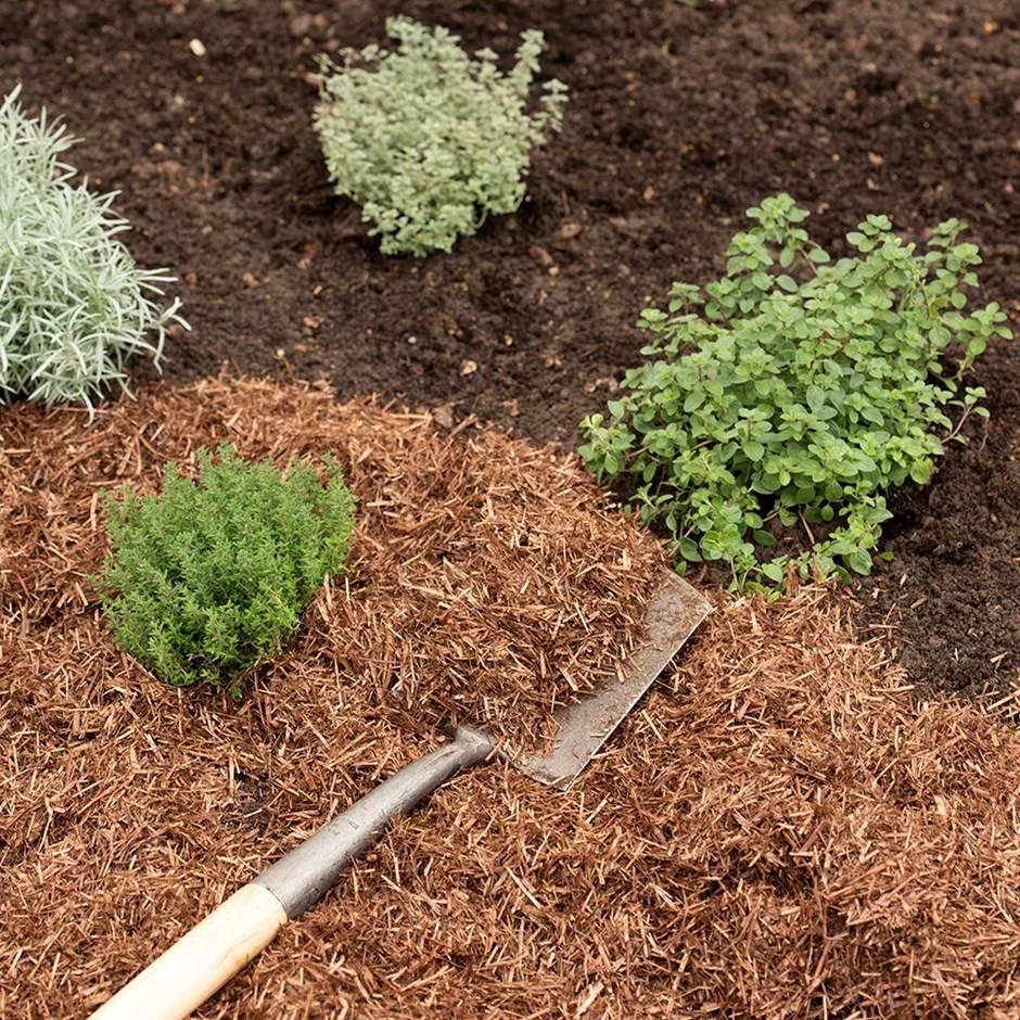 Мульчирование почвы и выбор материала для мульчирования
