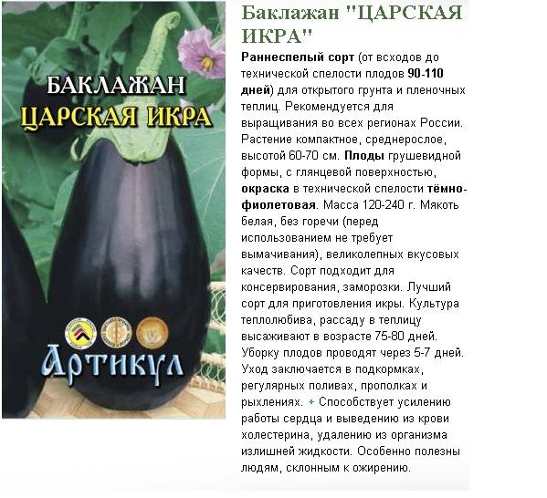 Особенности выращивания тыквы в открытом грунте