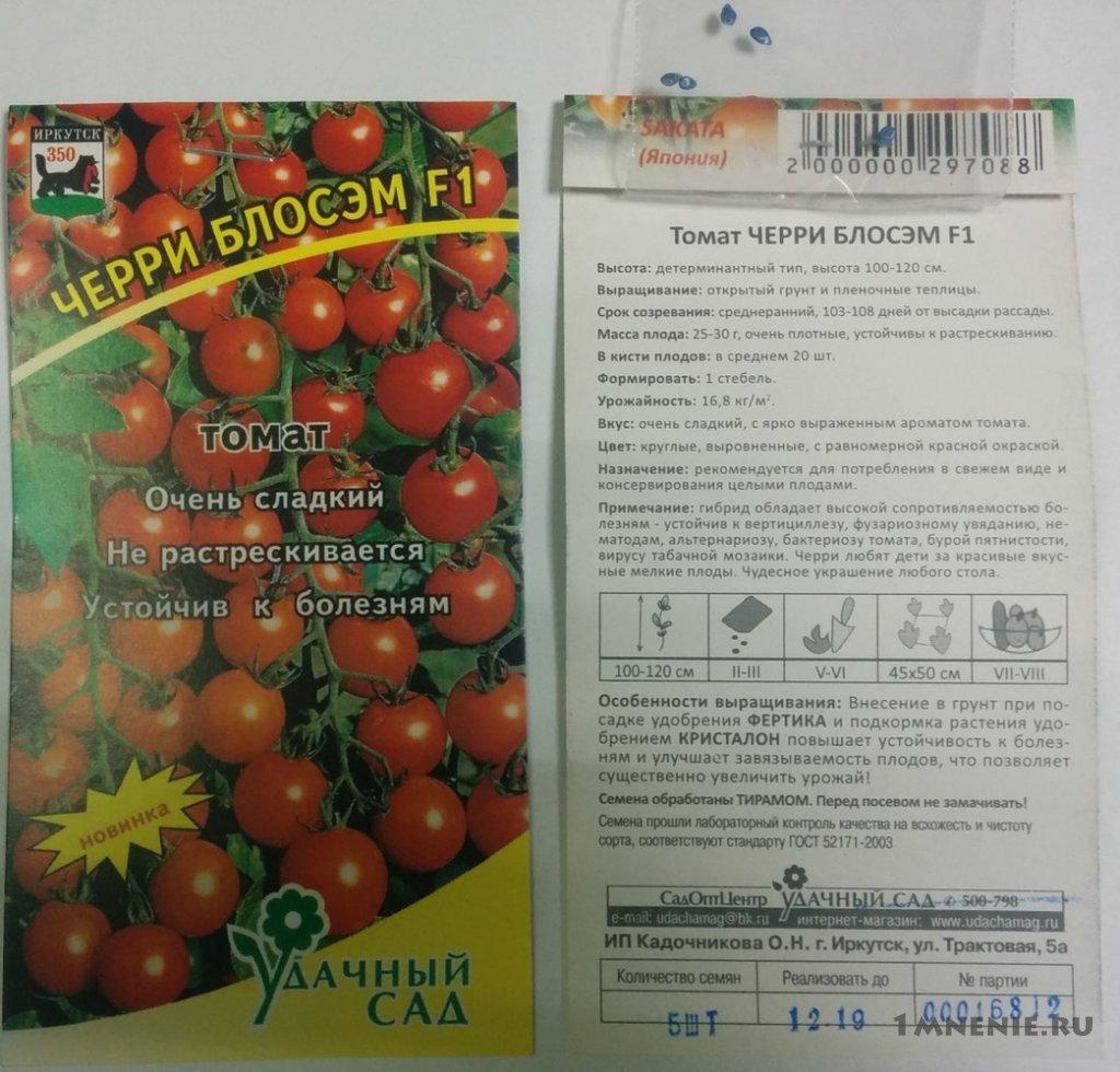 Описание сорта томата черри лиза, его характеристика и урожайность – дачные дела