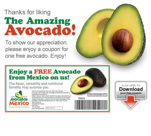 Хаас авокадо — похудение