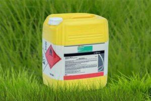 Инструкция по применению и норма расхода гербицида дерби 175