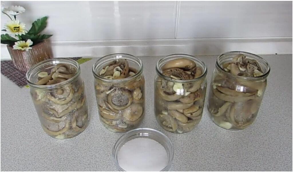 Можно ли хранить грузди в морозилке. как заморозить на зиму грузди, а главное – стоит ли? блюда, которые можно приготовить из замороженных груздей