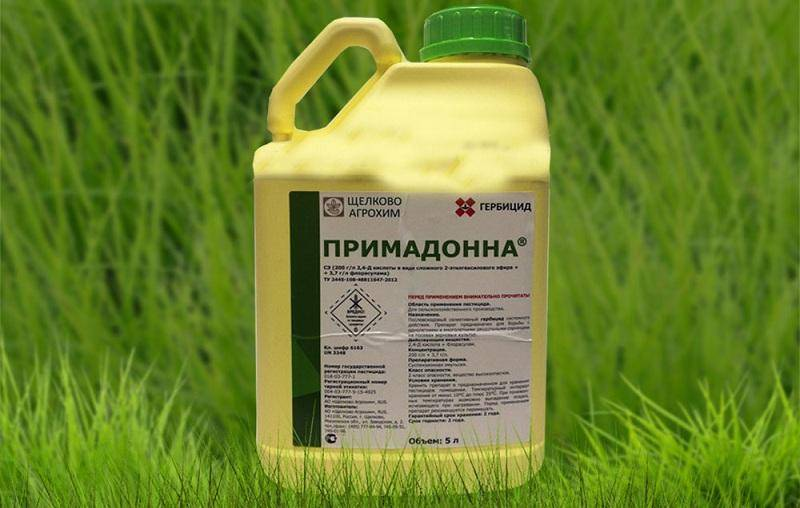 Гербицид для полевого хвоща: химические препараты и биологические способы