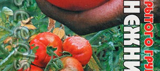 Томат «подснежник». описание сорта: характеристика урожайности и агротехника посадки, ухода и выращивания помидора (фото)