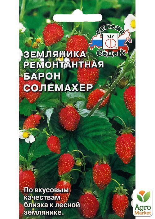 Земляника барон солемахер: описание сорта, выращивание, посадка и уход из семян