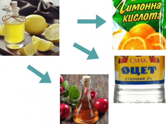 Уксус против накипи в чайнике: пропорции и пошаговые инструкции