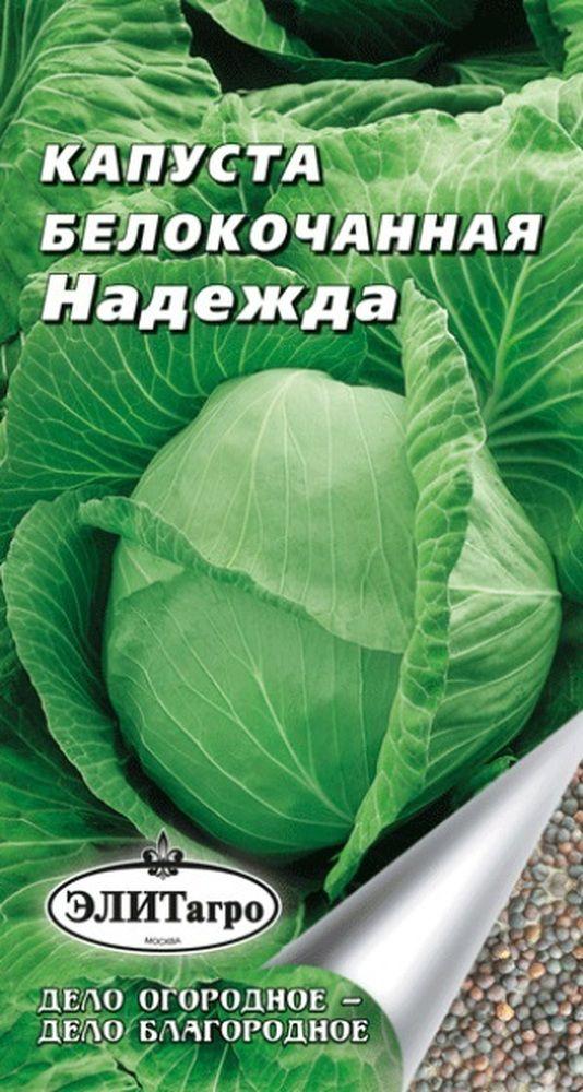 Капуста надежда: характеристика сорта, описание алгоритма выращивания белокочанной, а также область использования и фото овоща