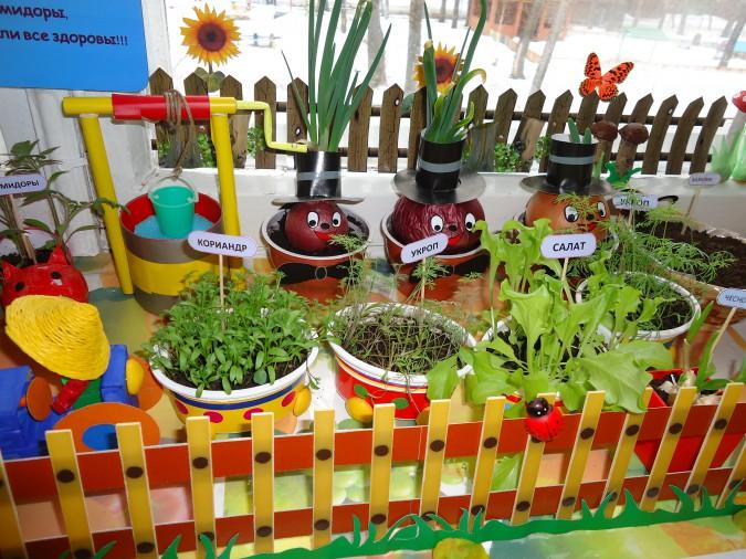 Планирование посадок и примерный перечень выращиваемых растений