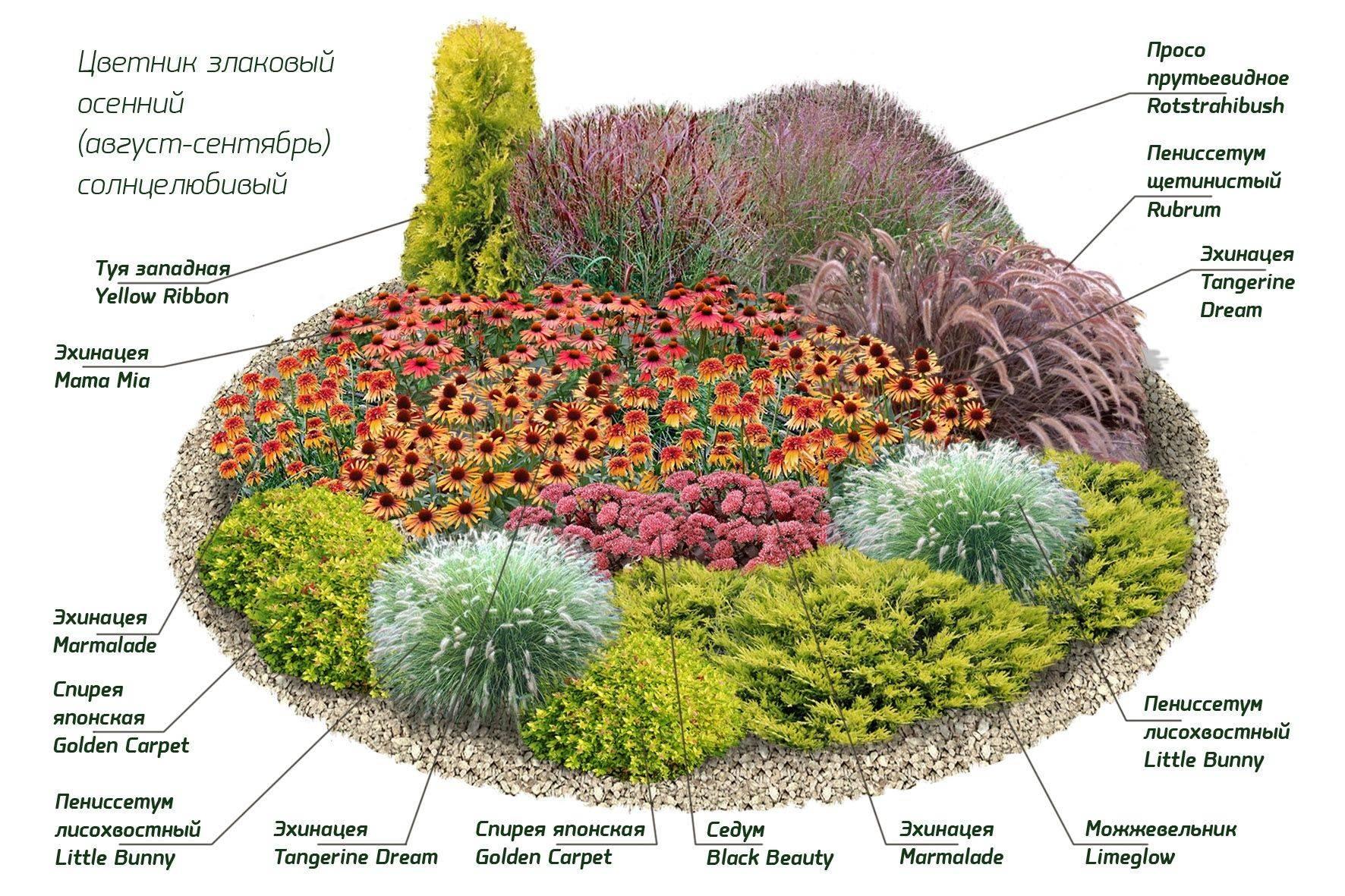 Цветы в ландшафтном дизайне (76 фото): розы, гортензии и ирисы на клумбах в саду, флоксы и обриета в оформлении дачного участка