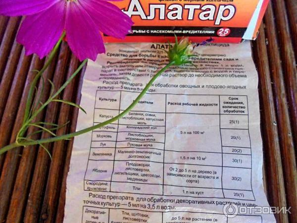 Алатар от колорадского жука: инструкция по применению средства