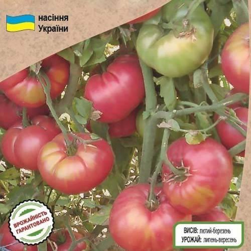 Томат корнеевский: описание сорта, отзывы, фото, урожайность   tomatland.ru