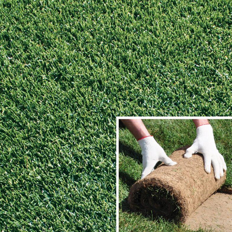 Подробная инструкция по укладке рулонного газона своими руками