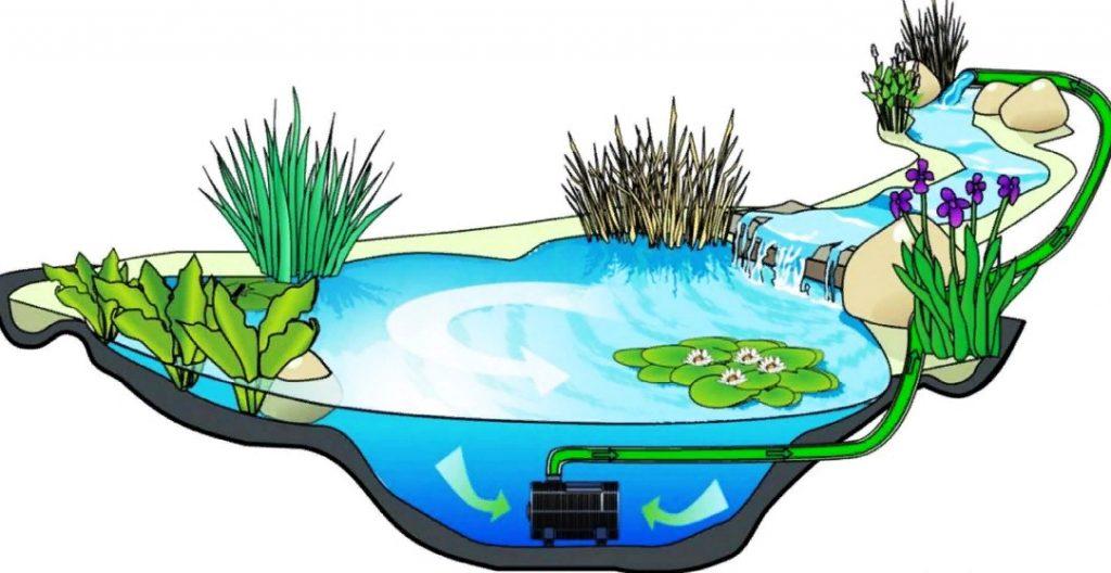 Подготовка пруда к зиме: очистка, уход и условия для рыб   огородники