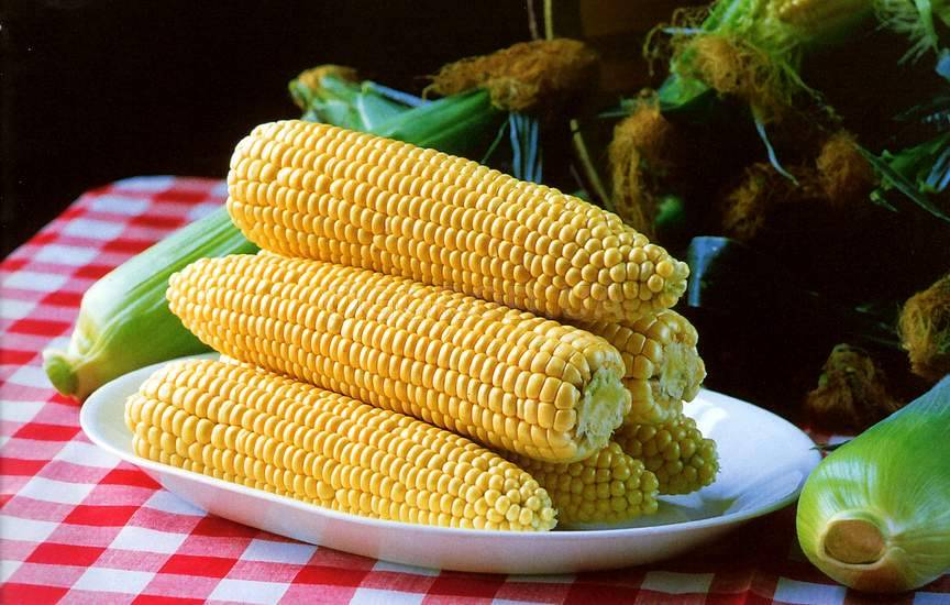Кукурузная крупа: польза, вред и калорийность   food and health