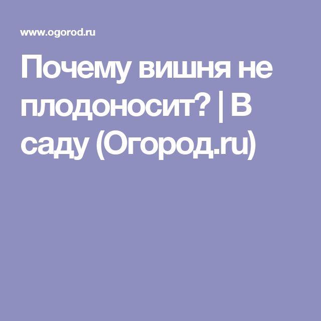 """Вишня цветет, но не плодоносит - что делать? - журнал """"совхозик"""""""