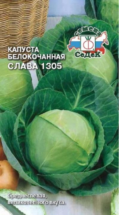 Капуста слава: описание и характеристика сорта, основные особенности, преимущества, недостатки, правила выращивания рассадой и семенами, урожайность