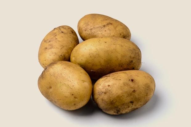Описание сорта картофеля зекура — особенности выращивания