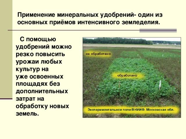 Все об азотных удобрениях: зачем они, какие бывают и как их правильно использовать на supersadovnik.ru