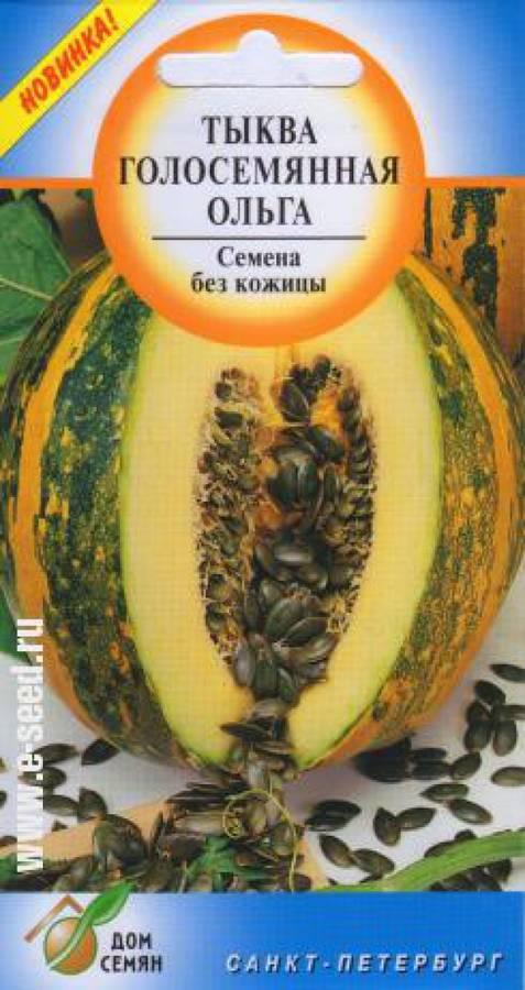 Тыква крупноплодная: описание сортов и характеристика, выращивание и уход с фото