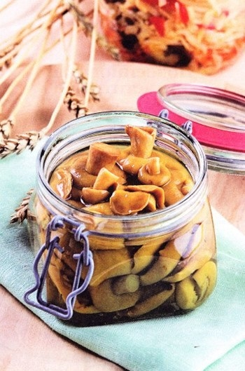 Как мариновать моховики — рецепты домашних заготовок на зиму