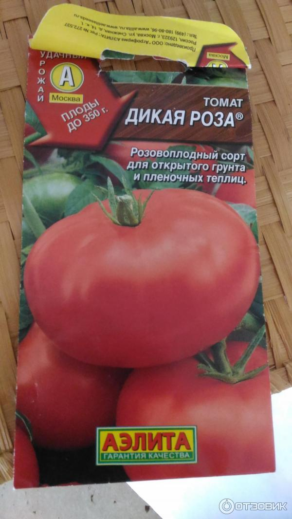 ✅ дикая роза: описание сорта томата, характеристики помидоров, посев - tehnomir32.ru