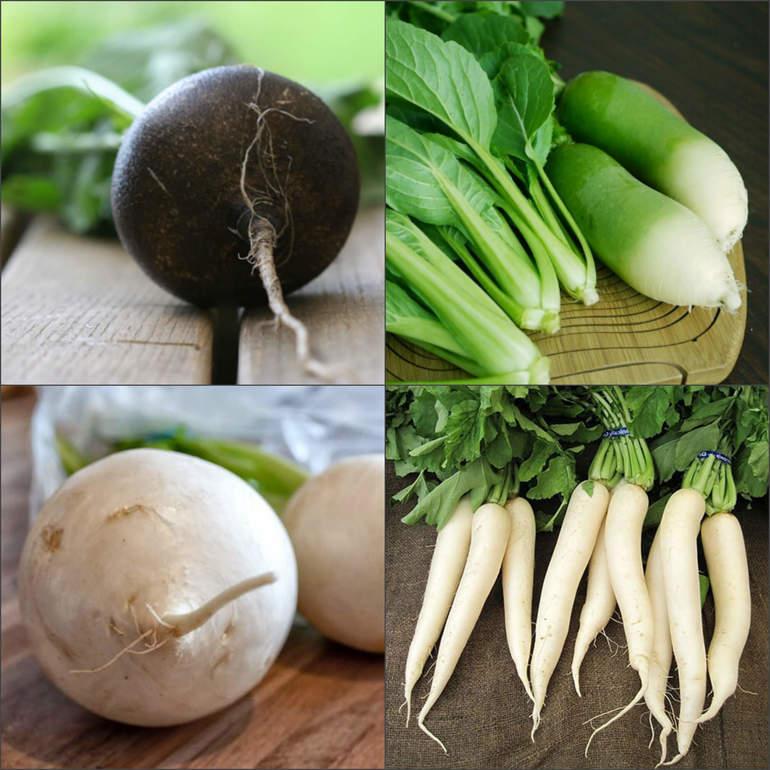 Редька черная: польза и противопоказания | food and health