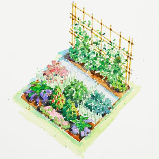 Секреты размещения огорода на небольшом участке - огород, сад, балкон - медиаплатформа миртесен